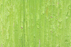 Old green paint on wooden board Stock Photos