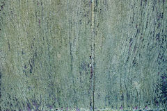 Old green painted wood door close up detail Stock Photography