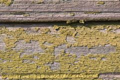 Old green painted wood. Wall - texture or background Stock Photo
