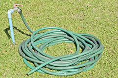 Old green rubber band roll Stock Photography