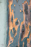 Old green turquoise coloured wood door Royalty Free Stock Photography