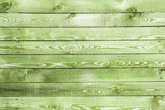 Old green wall Stock Photography