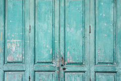 Old green weathered door Royalty Free Stock Image