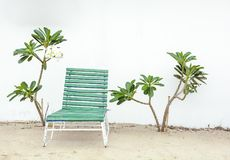Old green wooden chaise longue against a white wall surrounded b. Y plumeria trees royalty free stock image