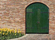 Old Green Wooden Door with Yellow Tulips. Old Green Wooden Door  set into a brick wall with Yellow Tulips and a cobble stone path Stock Photos