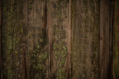 Old green wooden fence background. Texture close up Royalty Free Stock Photography