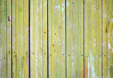 Old green wooden wall, closeup background texture Stock Images