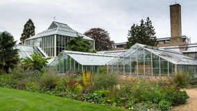 Old greenhouse in Cambridge Stock Photo