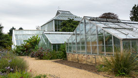 Old greenhouse in Cambridge Stock Photography