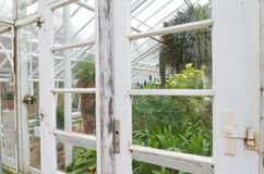 Old greenhouse Stock Images