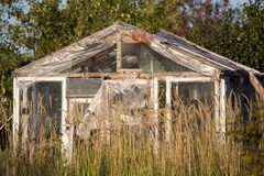 Old greenhouse with glass. In the garden Stock Photo