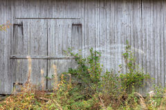 Old grey barn wall Stock Photography