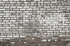Old grey painted brick wall background texture. Close up Stock Images