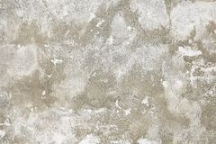 Old grey painted wall background texture. Close up Stock Photography