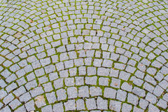 Old grey pavement of cobble stones Stock Photos