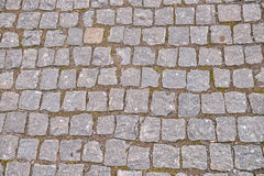 Old grey pavement in a pattern in an old medieval european town. Stock Photos
