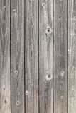 Old grey planks Royalty Free Stock Image
