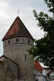 Old grey tower with red roof in the center Tallinn, Estonia Royalty Free Stock Image