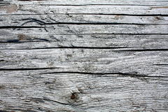 Old Grey Wood. Royalty Free Stock Photography