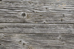 Old Grey Wood Panels Royalty Free Stock Images