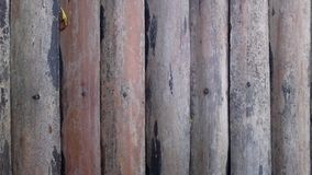 Wooden planks wall. Old grey wooden planks wall royalty free stock photo