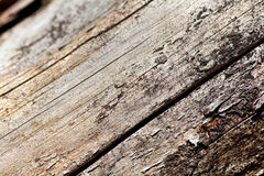 Old grey wooden texture Royalty Free Stock Photo