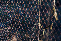 Old grid steel iron metallic rusty fence. Industrial Royalty Free Stock Images
