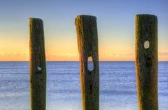 Old groynes on beach last defense Stock Images