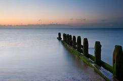Old groynes on beach last defense at sunrise Stock Images