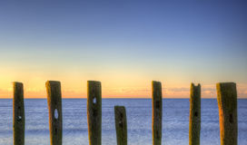 Old groynes on beach at sunrise Stock Photos