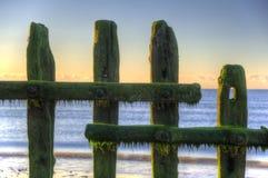 Old groynes on beach at sunrise Royalty Free Stock Photo