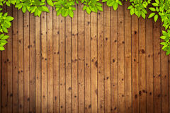 Old grung Wood Texture Stock Images