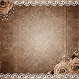 Old grunge background with roses Stock Images