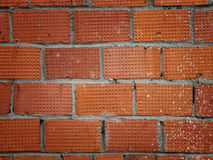 Old grunge brick wall background Royalty Free Stock Images