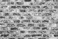 Old grunge brick wall background Stock Images