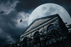 Old grunge building with bird at night over cloudy sky and the m. Oon behind, mysterious background Stock Images