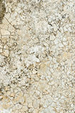 Old grunge crack cement floor Royalty Free Stock Photography
