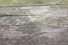 Old grunge dark textured wooden background, The surface of the old brown wood texture, top view brown wood paneling stock photography