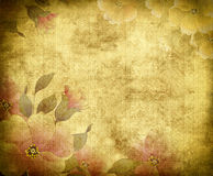 Old grunge floral paper background. Stock Photos