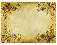 Old grunge floral paper background Stock Photography