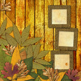 Old grunge frame with autumn leaves. Old grunge frame on the abstract background with autumn leaves Royalty Free Stock Images