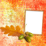 Old grunge frame with autumn oak leaves Stock Photo