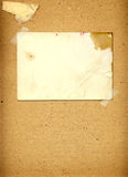 Old grunge frames on the ancient paper Royalty Free Stock Images