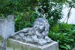 Old grunge lion statue on Lviv city street, Ukraine. Old grunge lion statue on Lviv city street in Ukraine royalty free stock image