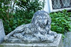 Old grunge lion statue on Lviv city street, Ukraine. Old grunge lion statue on Lviv city street in Ukraine, sculpture, grungy, scratched, cat, animal, feline stock image