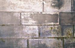 Old grunge natural bricks blocks textured stone background Stock Images
