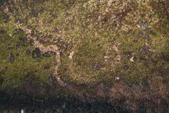 Old grunge natural textured stone background Royalty Free Stock Photography