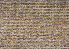 Old grunge orange brick texture background Royalty Free Stock Images