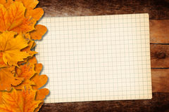 Old grunge paper with autumn leaves Royalty Free Stock Photography