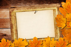 Old grunge paper with autumn leaves Royalty Free Stock Images